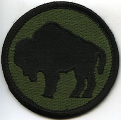 Buffalo Soldier Patch